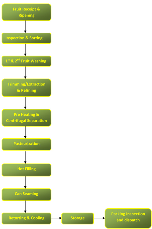 Processing of Gold With Flow Chart Process Flow Chart